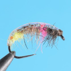 Champion Nymph Rainbow Special