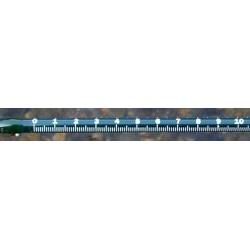Fish Scale Tape Measurement 70 cm