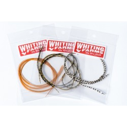 Whiting Hackles, bag of 3 pcs